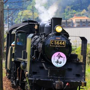 大井川鐵道 令和HM付き C56-44を撮影