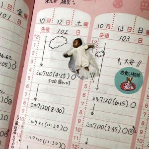 手帳の使い方インタビュー#111 momokonnyさん×グリコのベビーダイアリー×日の長さを感じる手帳