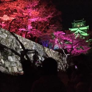 カラフルな広島城