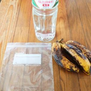 今年も昆虫採集☆バナナトラップのご紹介☆You Tubeの野菜達☆