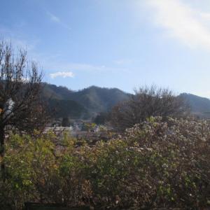 穏やかな晴天