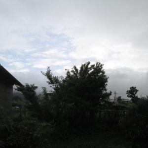 今日は曇り