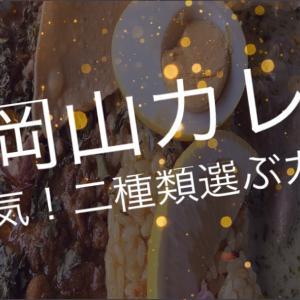 [熊本食べて応援]動画 花岡山カレー!大人気の二種選べるカレーセット☆熊本市西区春日