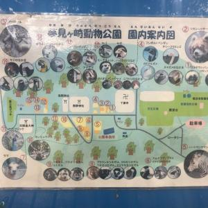 動物園×iPad