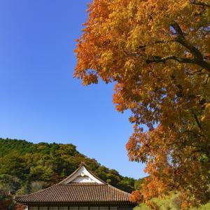 かなり回復・岡山の観光・8月