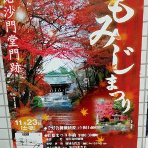 11月22日 毘沙門堂門跡(京都市)の紅葉