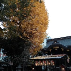 12月7日 菅原院天満宮神社(京都市)の楓と銀杏