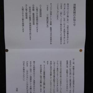 【お知らせ】明日7月1日より養源院(京都市東山区)の拝観再開