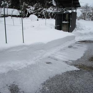 大雪が降った後は....