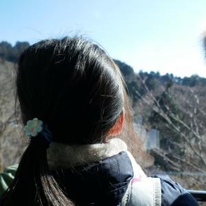 小田原・箱根旅行 絶景を拝む