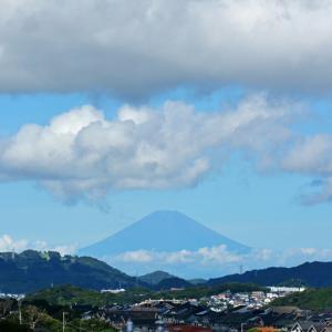 ふわふわの‥ 『90km先の富士』