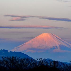 この日は‥『自宅から90km先の富士』