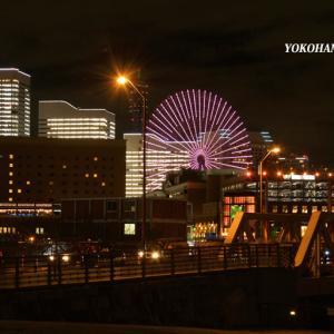 一夜限りのイルミネーション『そうだ 横浜、行こう』④