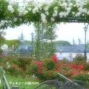 バラと艦船 『ヴェルニー公園 2020』④