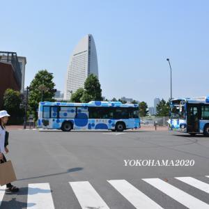 半年ぶりに‥ 『そうだ 横浜、行こう』④