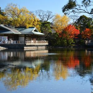 やめといたらぁ 『そうだ 鎌倉、行こう』