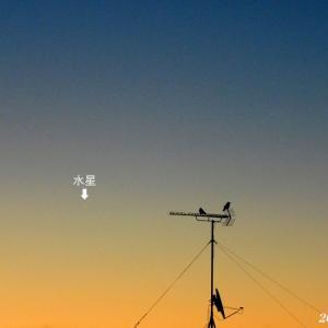 1月13日 『自宅から90km先の富士 2021』