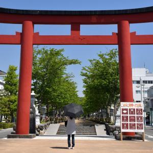 新緑の頃 『そうだ 鎌倉、行こう 2021』