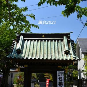 思いやり 『そうだ 鎌倉、行こう 2021』