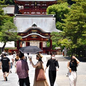 私、見逃さないので‥ 『そうだ 鎌倉、行こう2021』