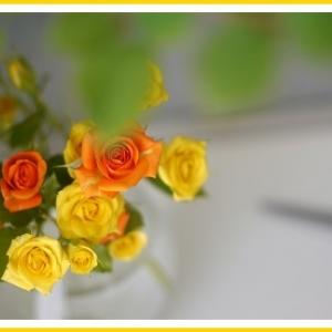 父の日のお花は?