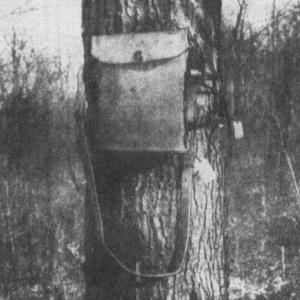 長く使われた野戦電話機
