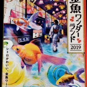 東京金魚ワンダーランド2019
