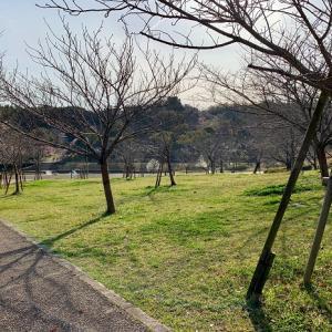 公園散歩~そのいち(^-^)