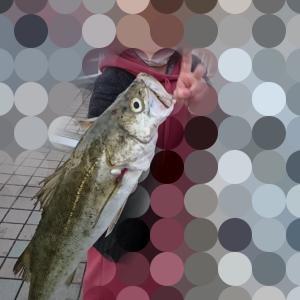 釣友、釣果
