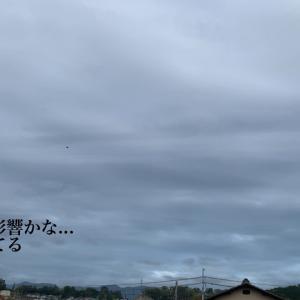 また台風...