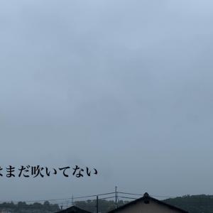 台風の雨から始まる三連休