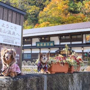 秋の紅葉♪東北旅~1日目630km