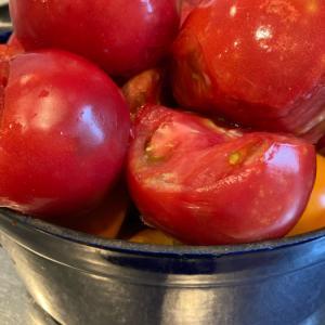 トマトトマトトマト
