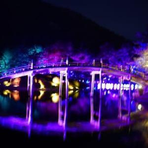 チームラボ 栗林公園 光の祭
