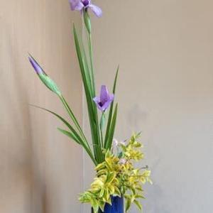 ハナショウブの瓶花