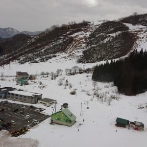 最終日の雪に大満足♪