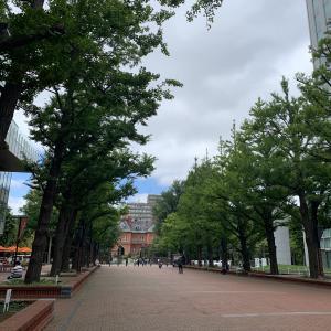 9月1日の「歩く会」は、北海道庁を歩いてきました♫