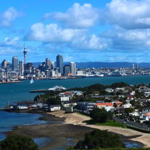 ニュージーランド(北島)と日本の、自然と郊外宅地エリアの違い