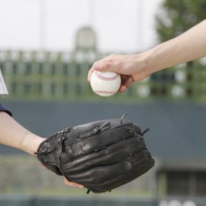 高校野球はそもそも団体が別組織なで、特別ではなく別だから開催してほしいが中止が決定