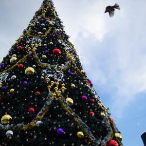 TDS☆クリスマス 3