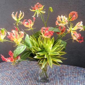 ドラセナ・ソング・オブ・インディアの生け花とアレンジメント♪