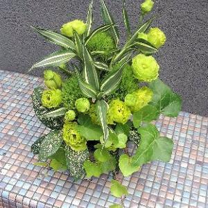 グリーンのアレンジメントとグロリオーサの生け花♪