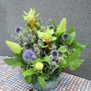 パープルとグリーンのアレンジメントとクルクマの生け花♪