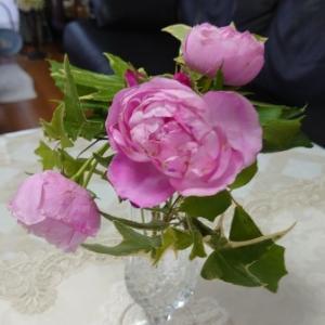 素敵な! 薔薇のプレゼント~♪