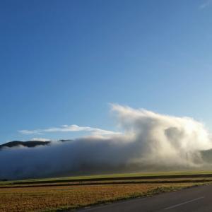 朝はスッキリ❗晴れました。