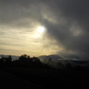 山の畑は霧でした
