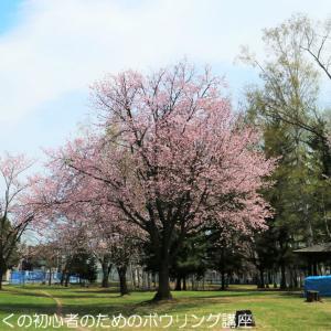 桜咲く――。