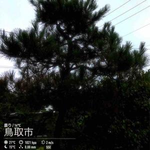 2019年10月14日(月)午前9時の気温16.7度、湿度74%、曇り空で迎える鳥取市滝山の朝です。