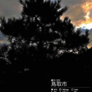 2019年10月16日(水)午前7時の気温12.6度、湿度70%、薄曇りで迎えるよう鳥取市滝山の朝です。