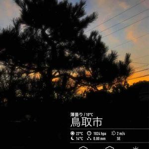 2019年10月17日(木)午前時の気温8.8度、湿度88%、末広がりな鳥取市滝山の朝です。